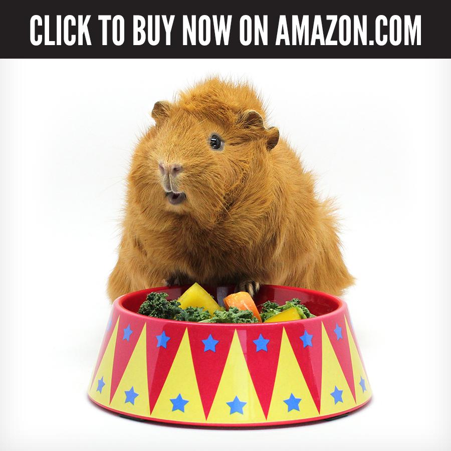 US Amazon - Food Craving Tamer.jpg