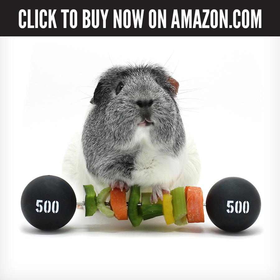 US Amazon - Piggy Weightlifter.jpg