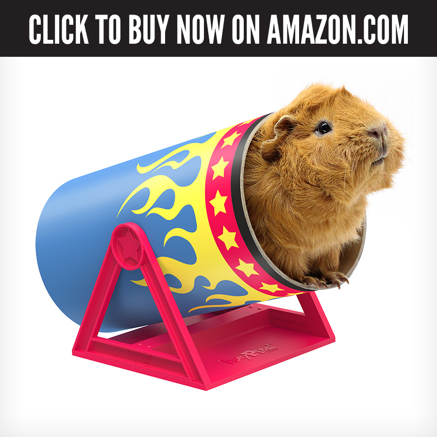 US Amazon - Cavy Cannonball.jpg