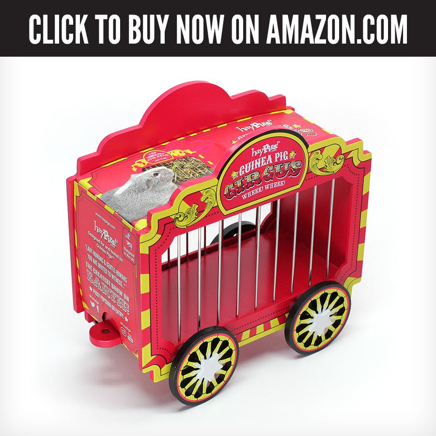 US Amazon - Wheek Wagon.jpg