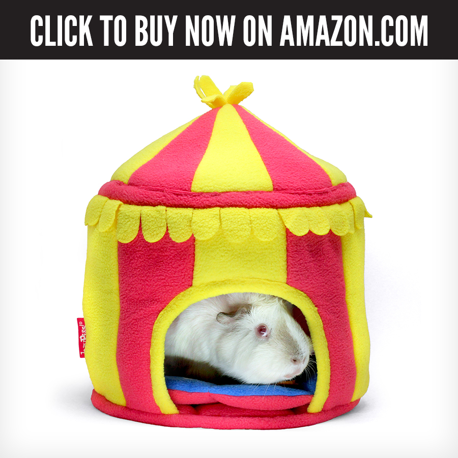 US Amazon - Circus Hidey Hut.jpg