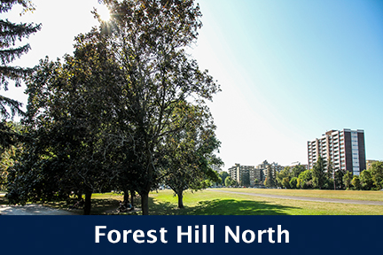 Forest hill North.jpg