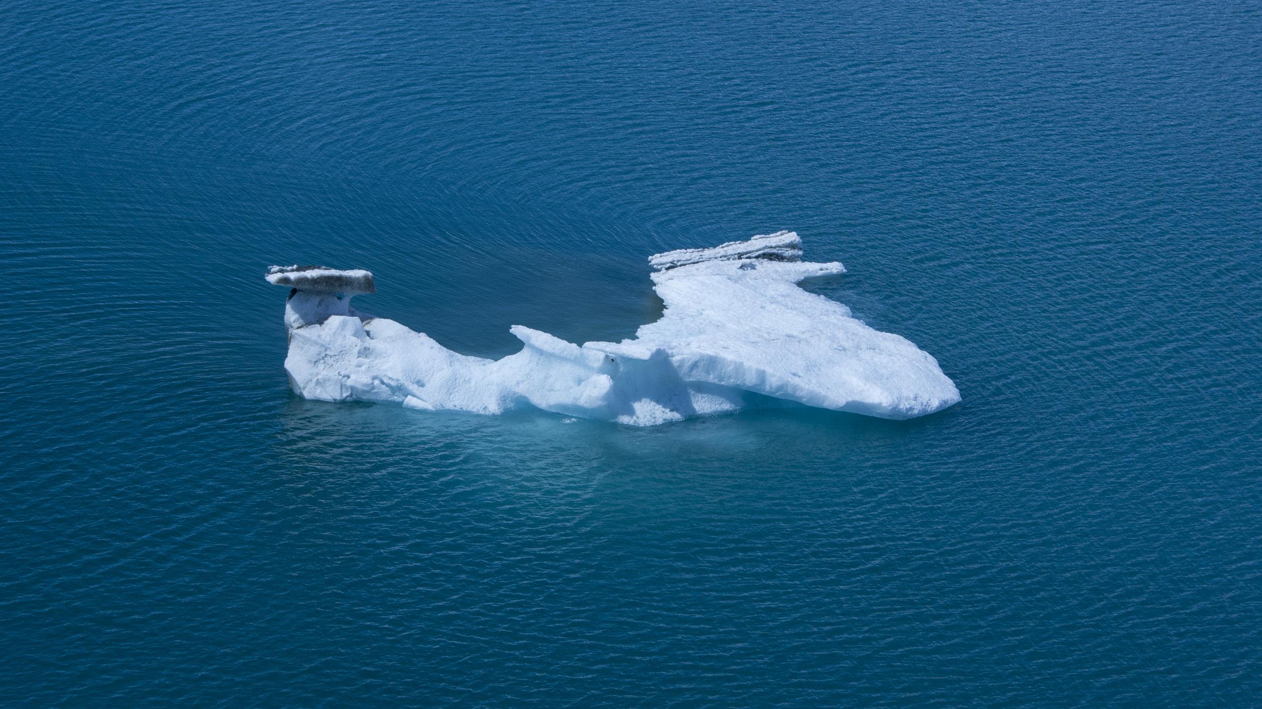 Iceberg in Glacier Bay, Alaska