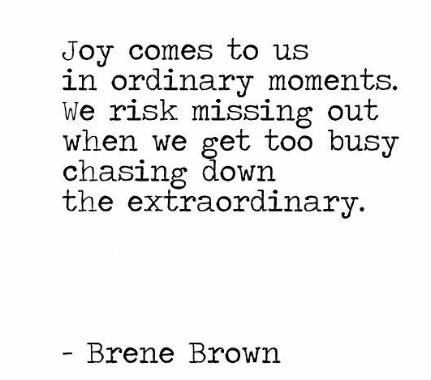 joy-comes-to-us_brene-brown.jpg