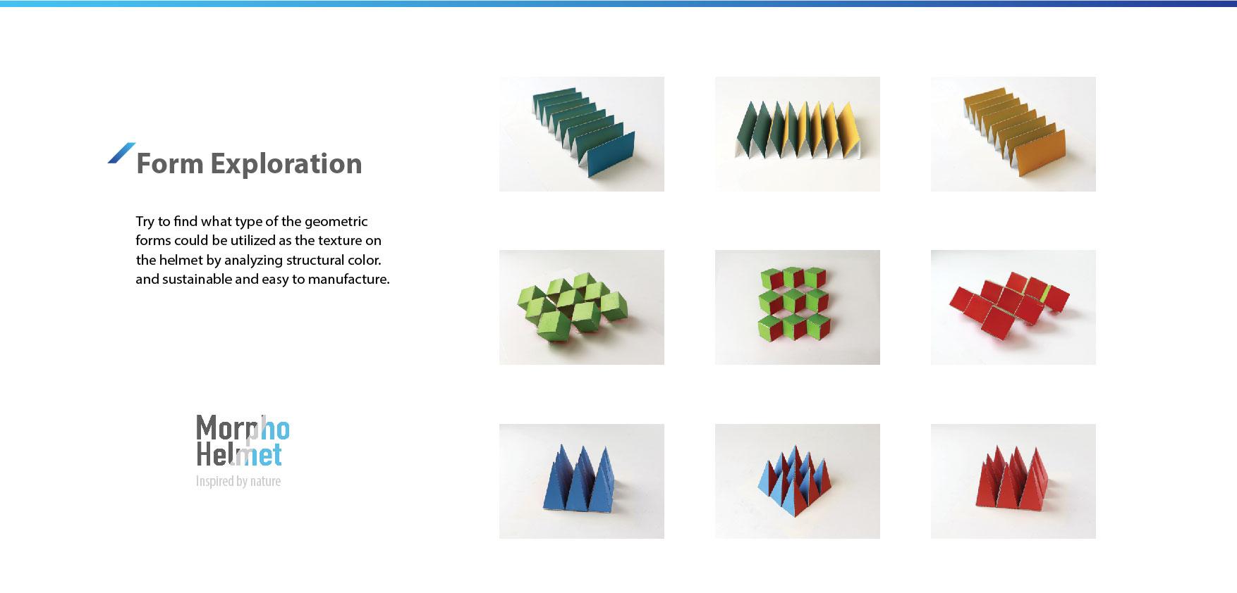 Morpho_portfolio-02.jpg