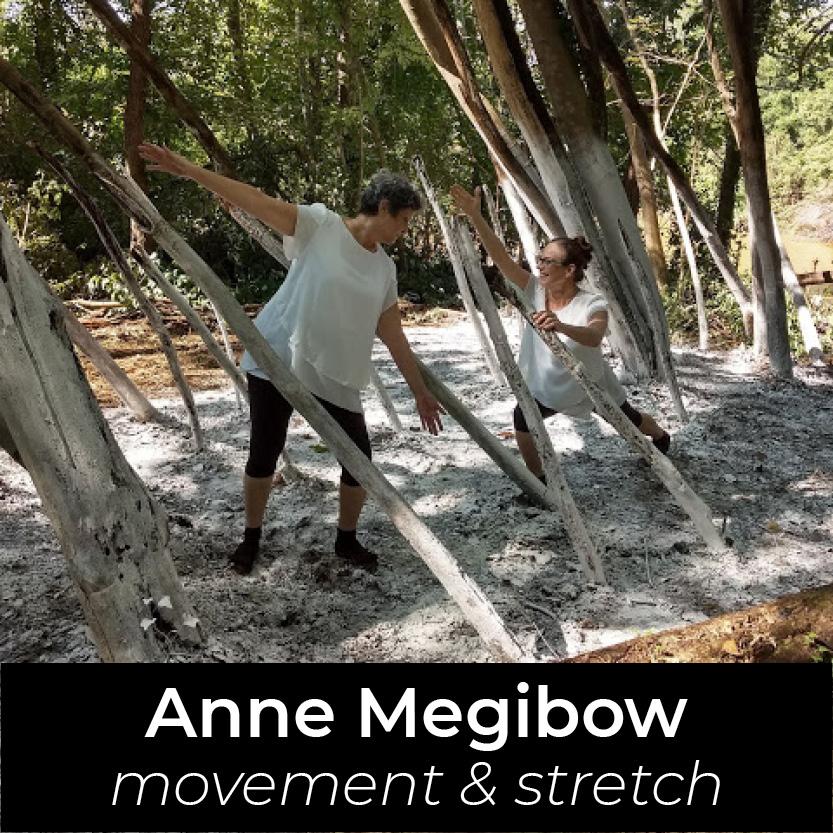 Anne Megibow