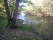 176_Oct11_21_Collier_s_Looking_Downstream.jpg