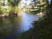 176_Oct11_22_Collier_s_Looking_Upstream.jpg
