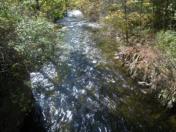 176_Oct11_36_Downstream_on_Bull_s_Head_Bridge.jpg