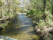 176_Oct11_43_Upstream_from_Rec_Park_Bridge.jpg