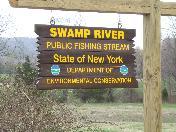 176_Swamp_river_PFR.JPG