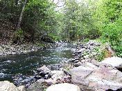 176_Wassiac_Creek,_2008.JPG