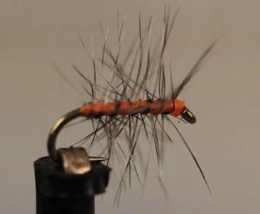 Orange Asher Midge tied by Tim Flagler for Tightline Productions