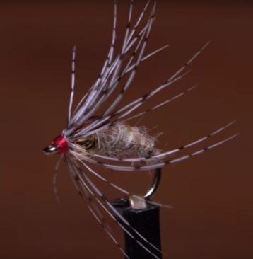 Holy Grail Caddis Emerger tied by Tim Flagler of Tightline Procuctions