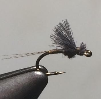 November Fly of the Month: Almost There Baetis