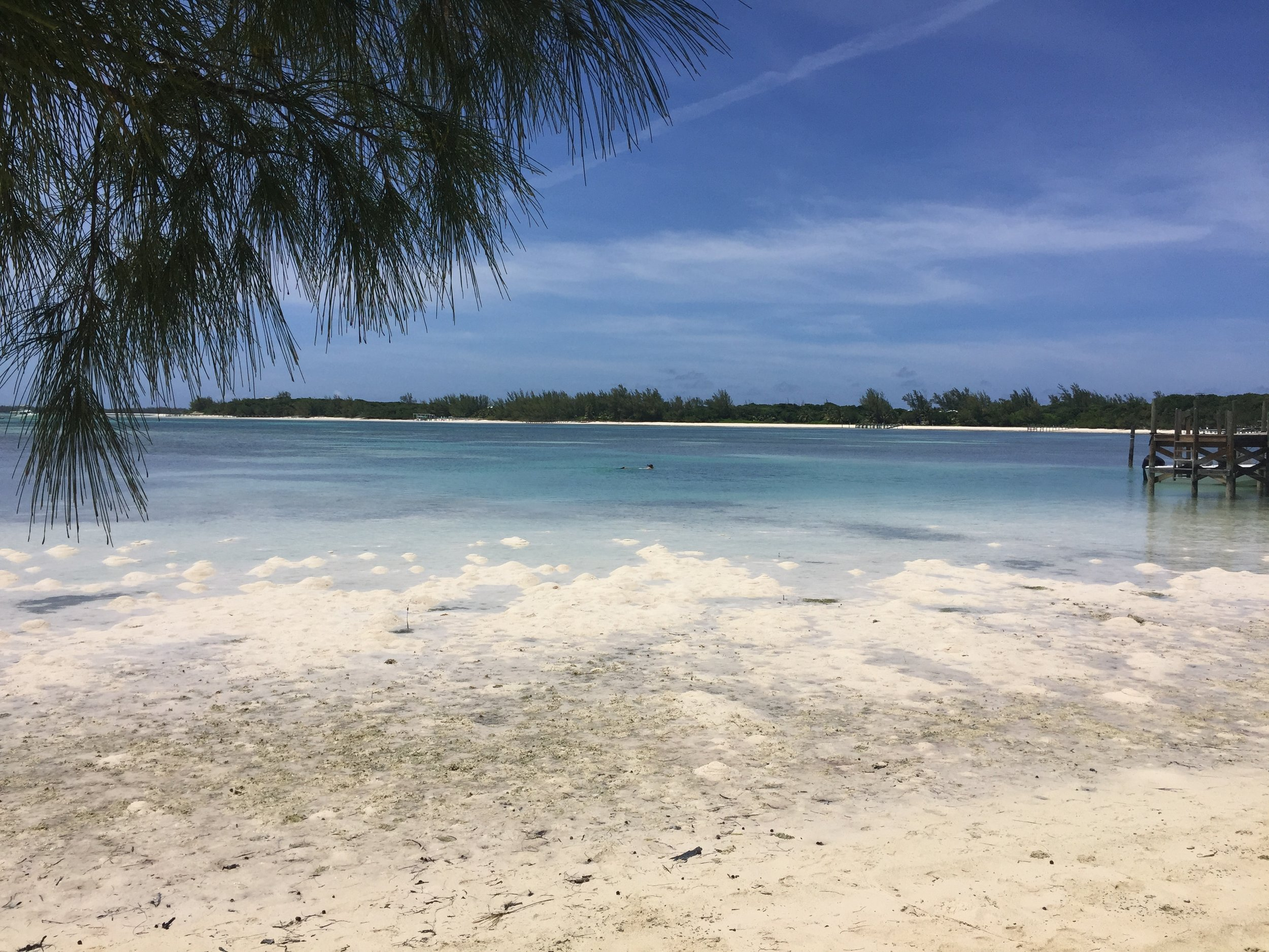 Green Turtle Cay Bay