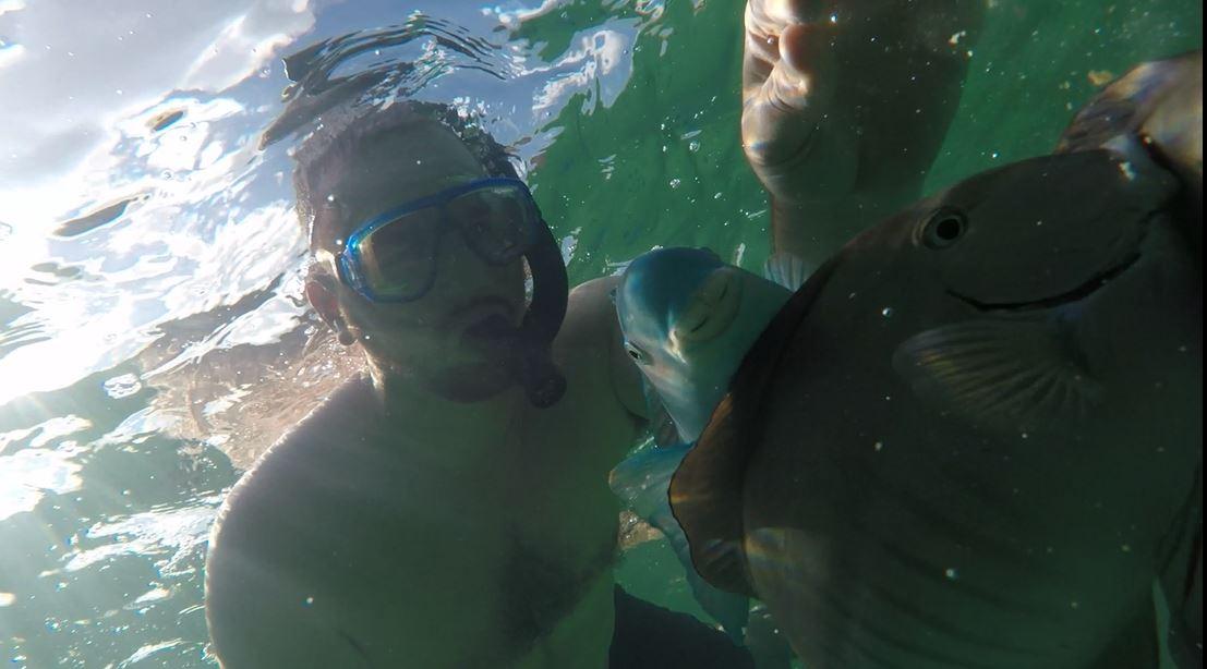 Mermaid Reef Fish Crackers
