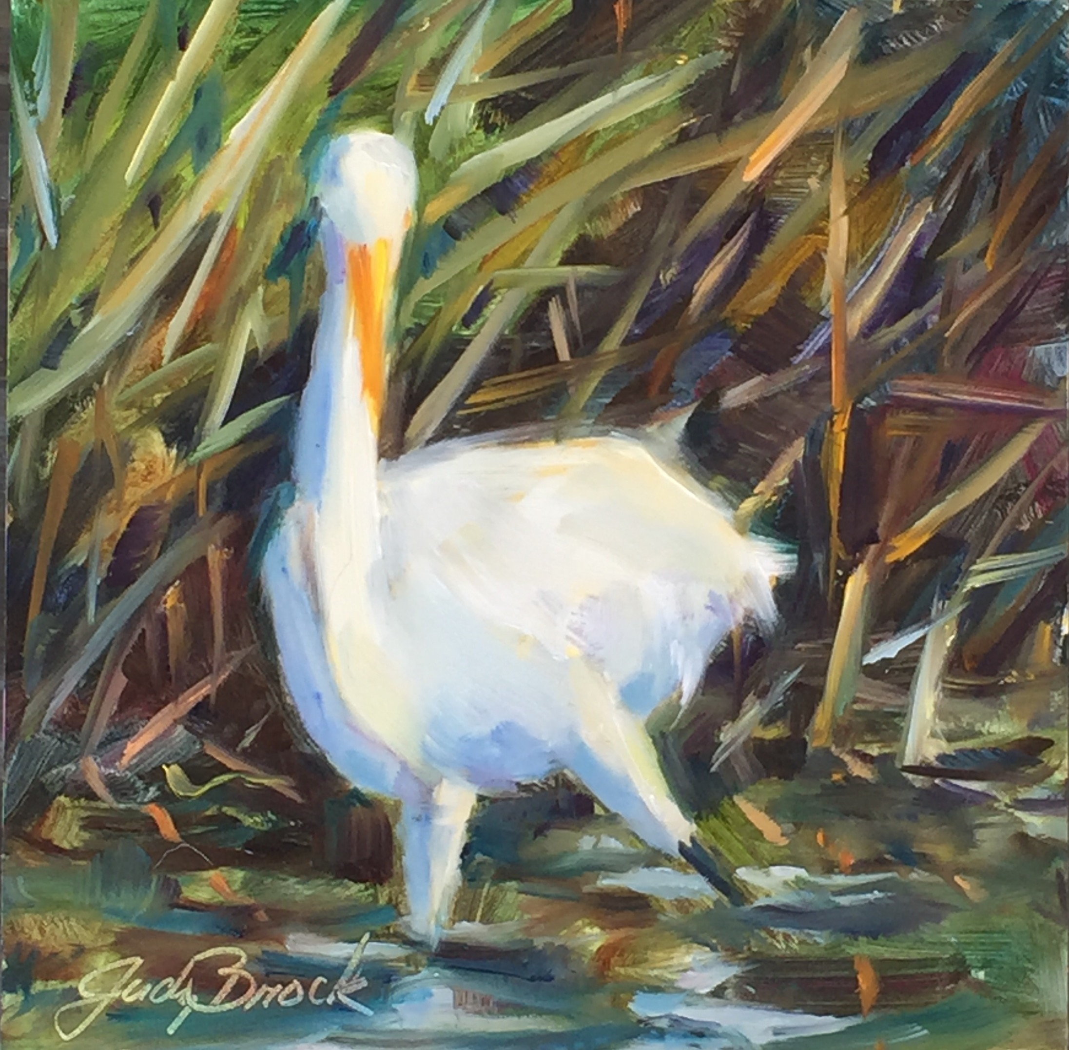Egret Out for a Stroll