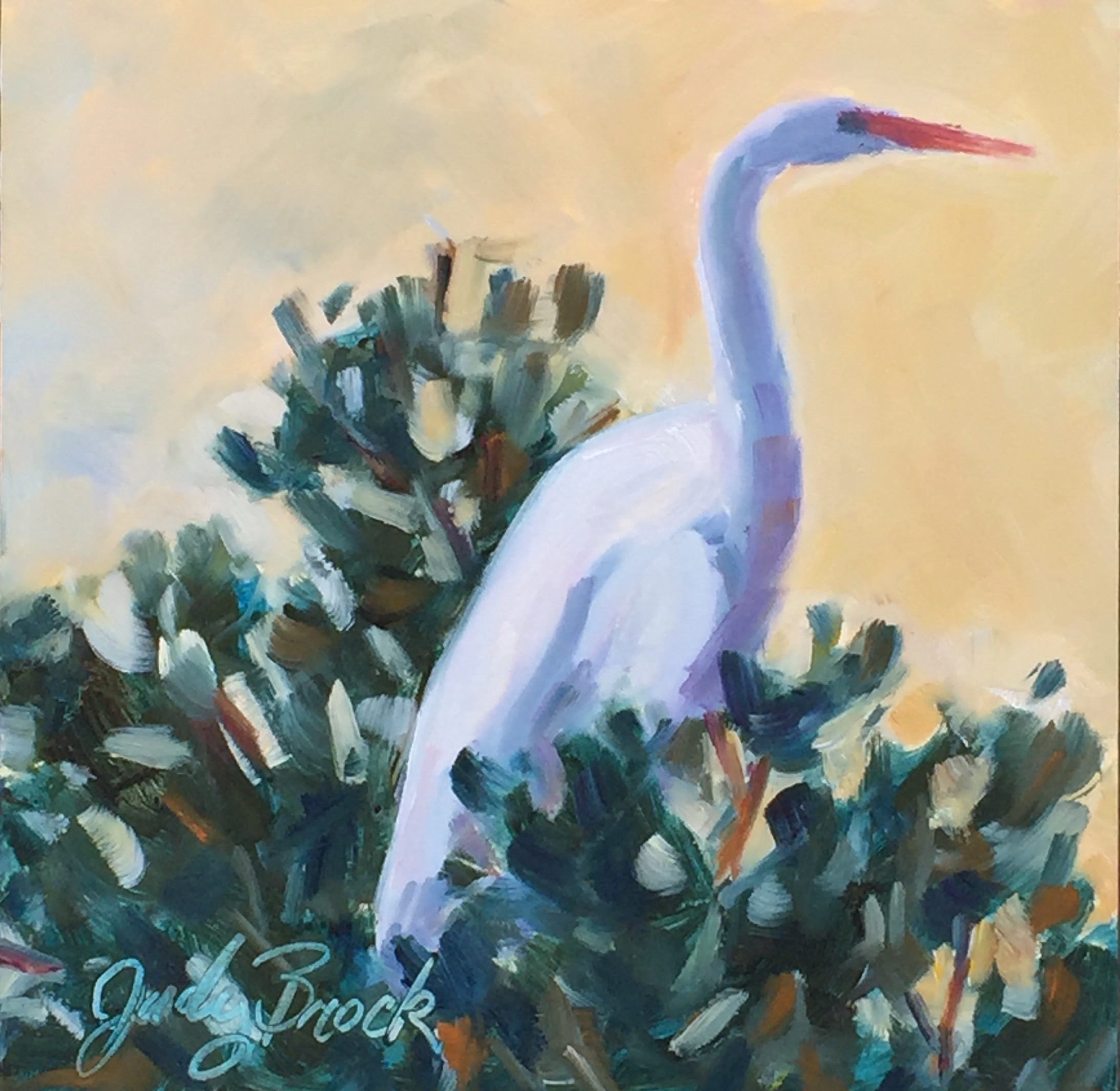 Egret in the Treetop