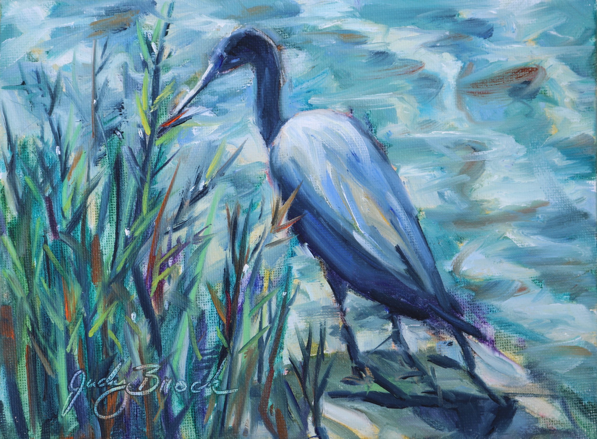 Marsh Bird Fishing