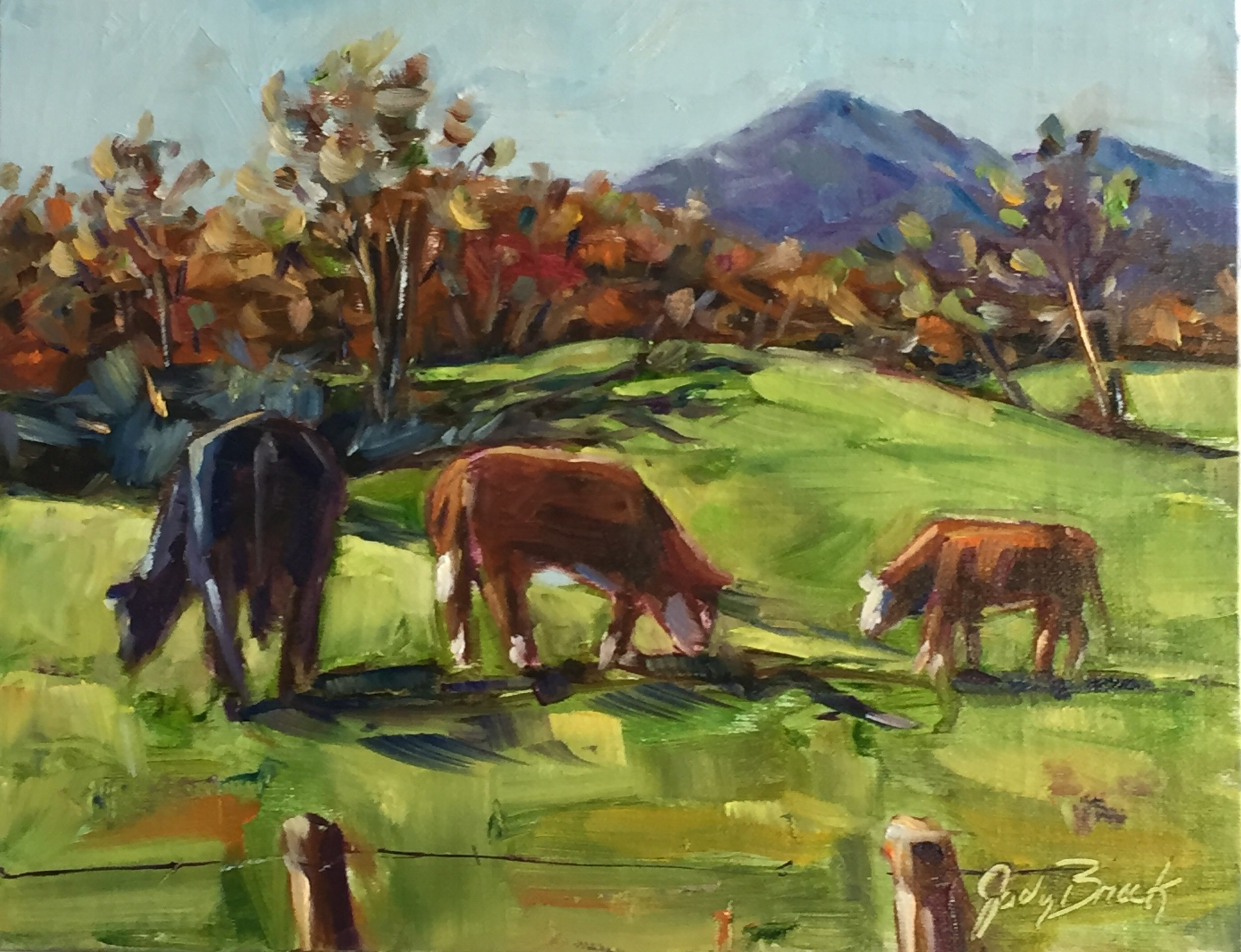 Mountain Cows