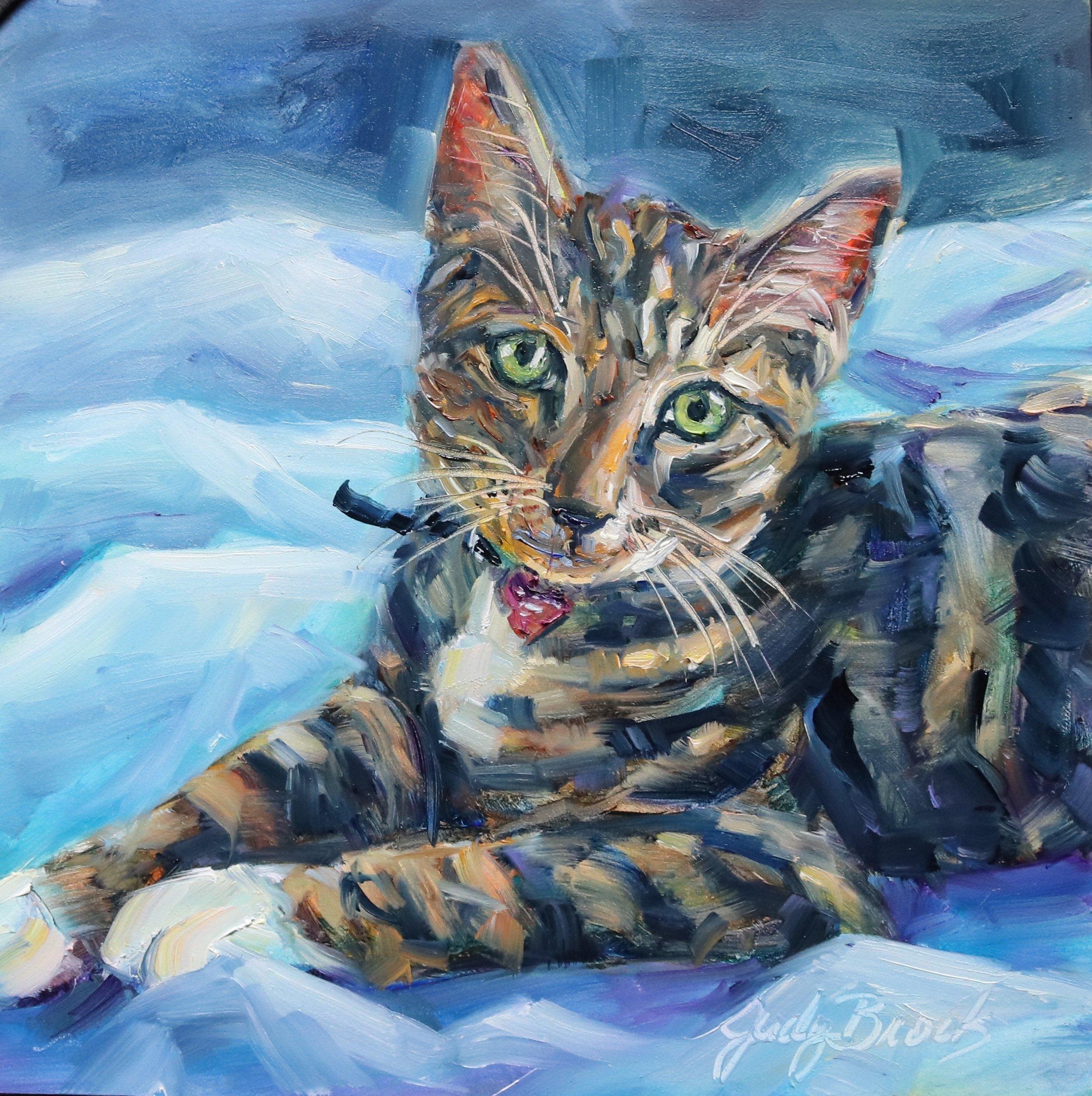 Tori's Cat
