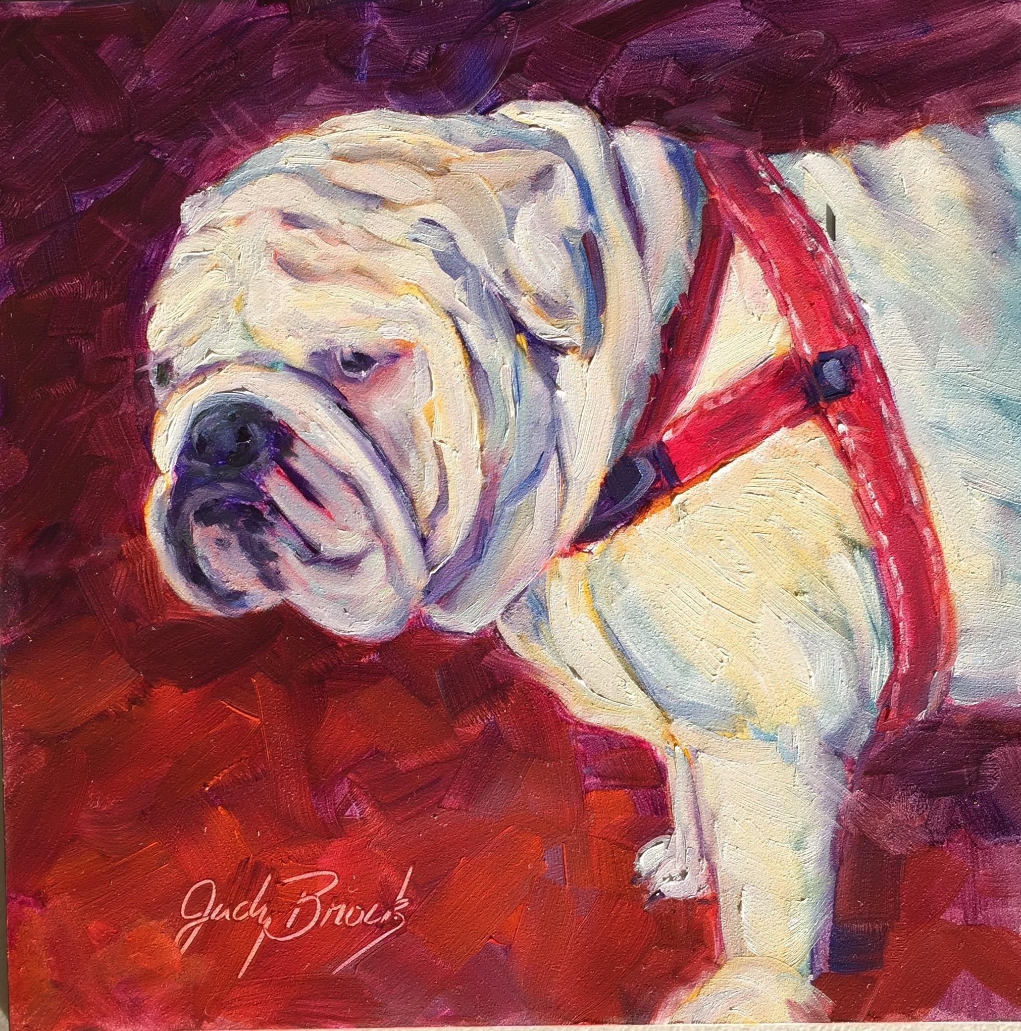Bulldog #1
