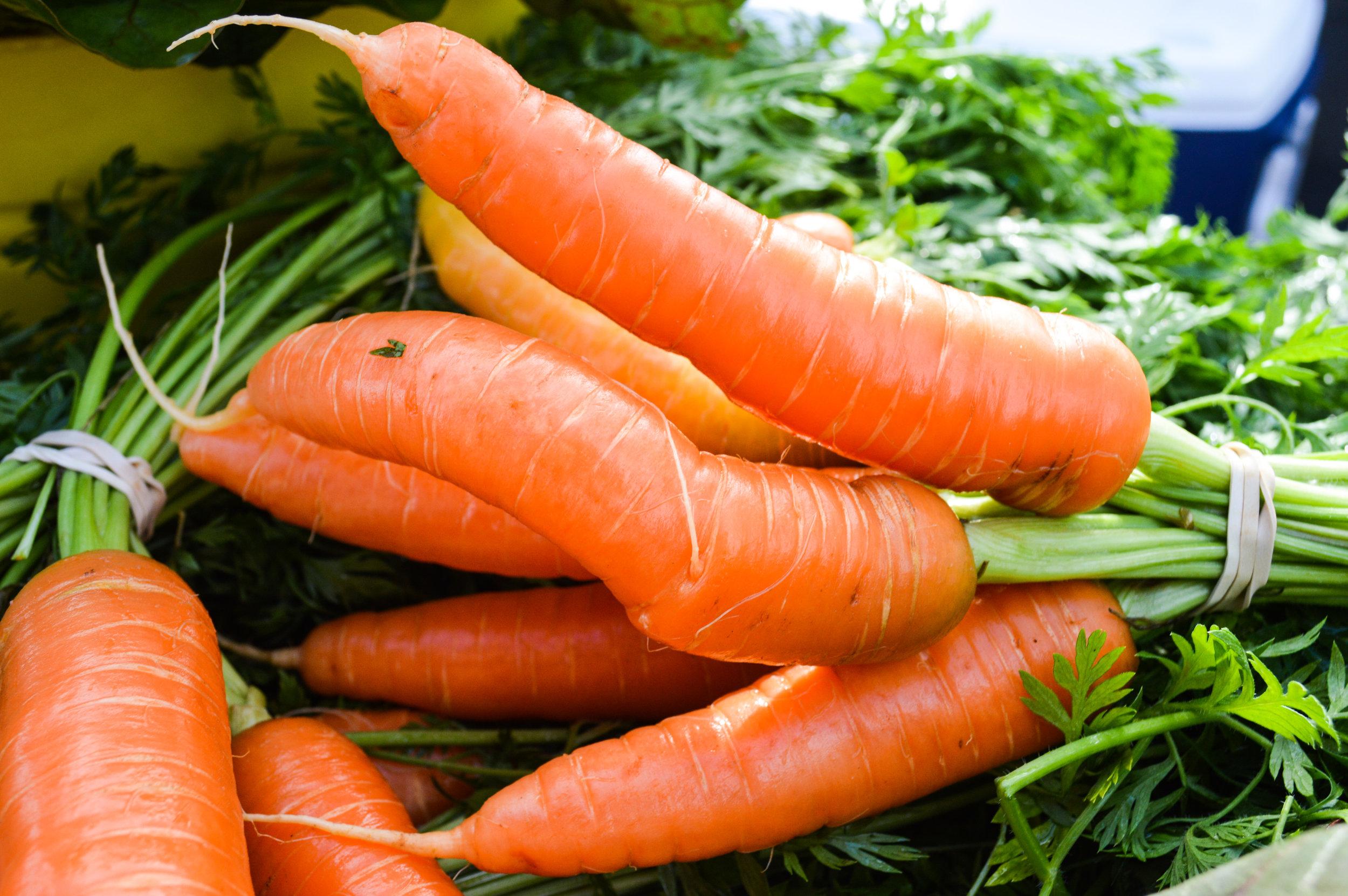 Wonderful Carrots from Spreading Oaks Farm!