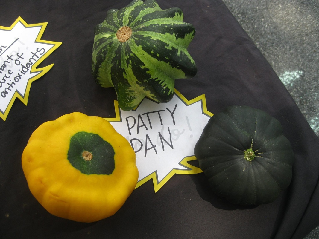 Squash with labels.jpg