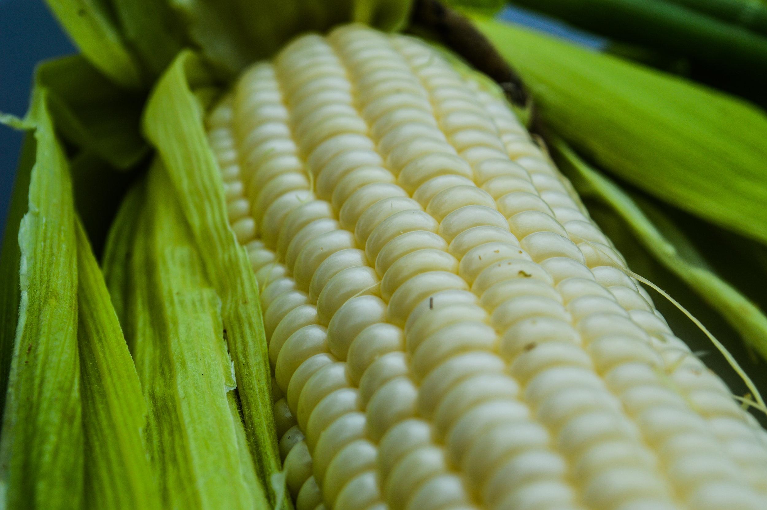 Velmon Corn.jpg