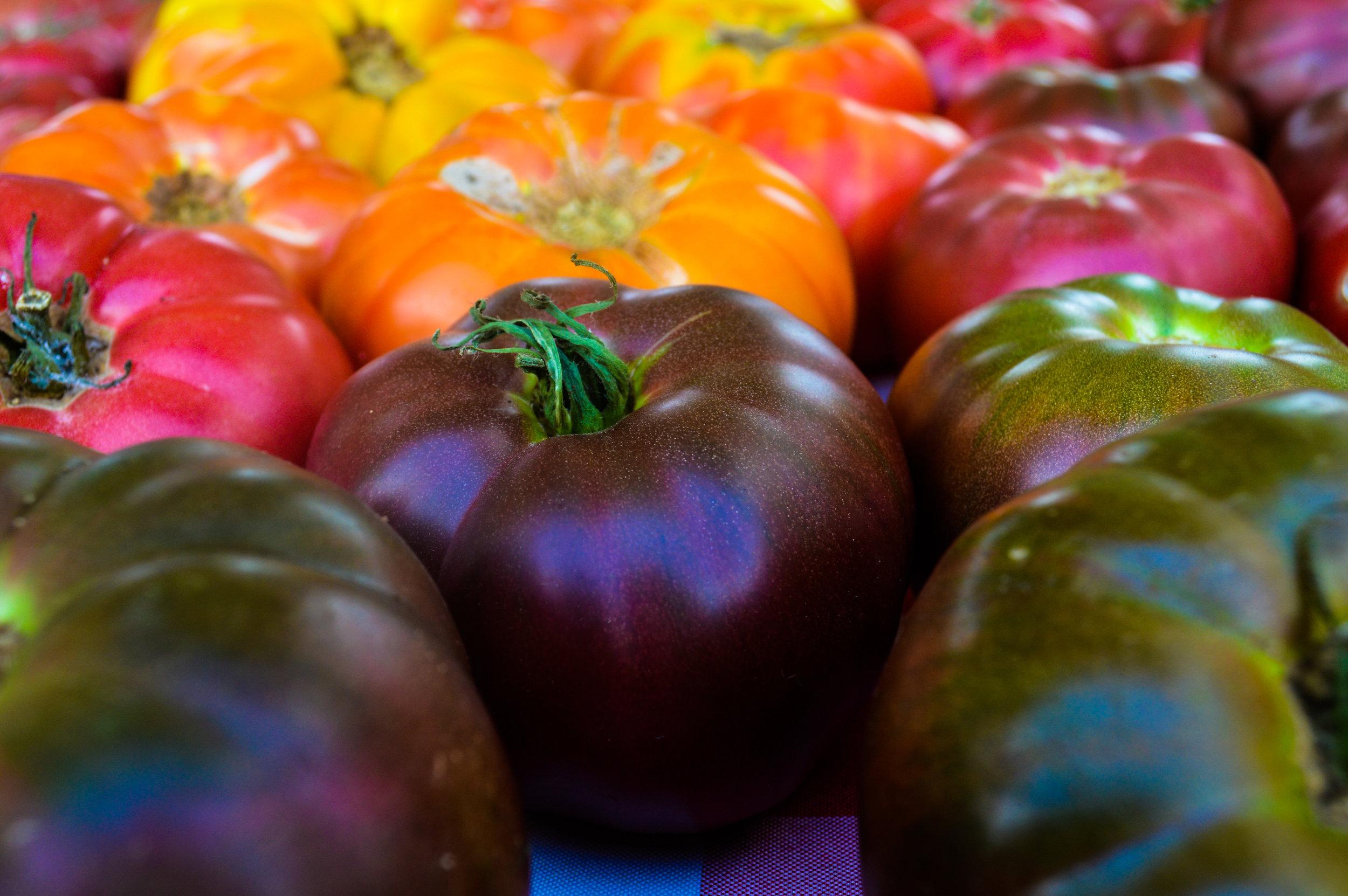 Spreading Oaks Tomatoes 2.jpg