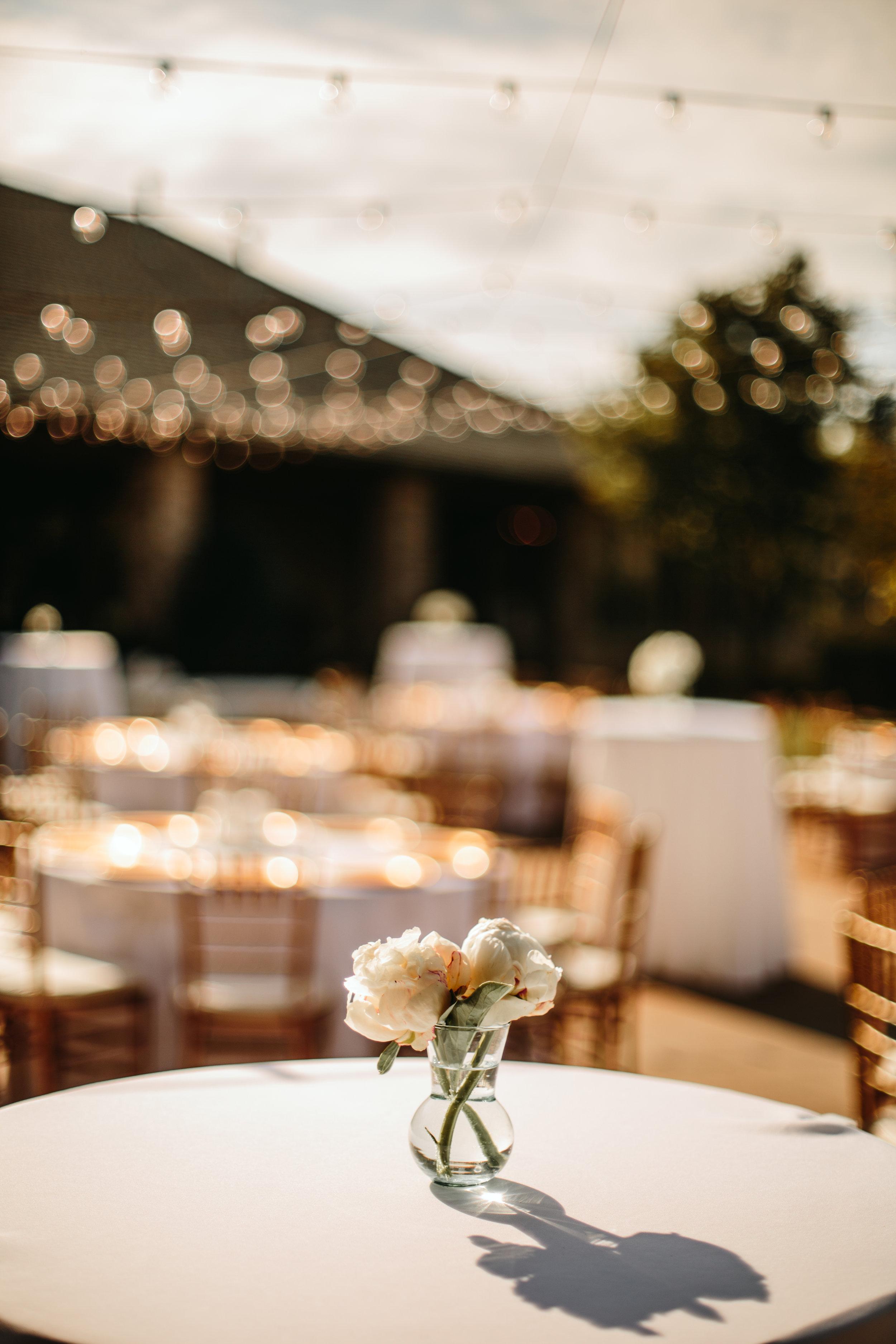 wedding 9573.jpg