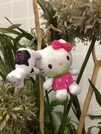 "#heiferBelle meets Hello Kitty. Their facebook status reflects their relationship now ""It's Complicated!"""
