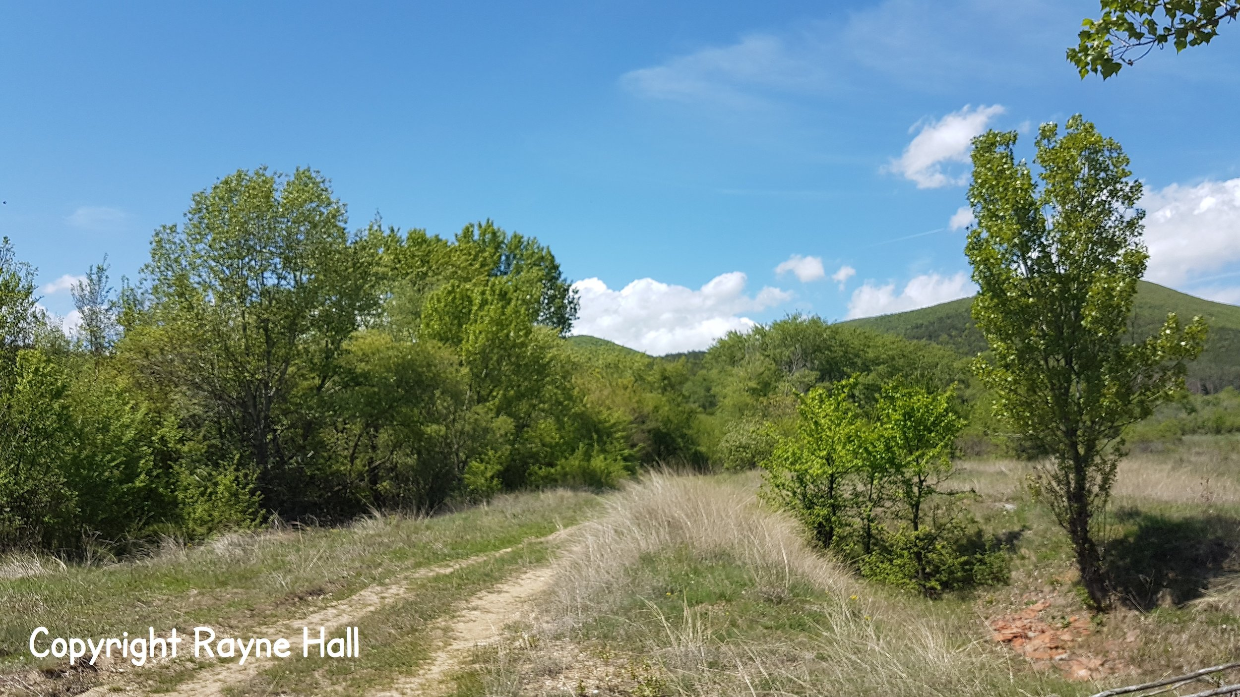 Rayne-Hall-Bulgaria-copyright (6).jpg