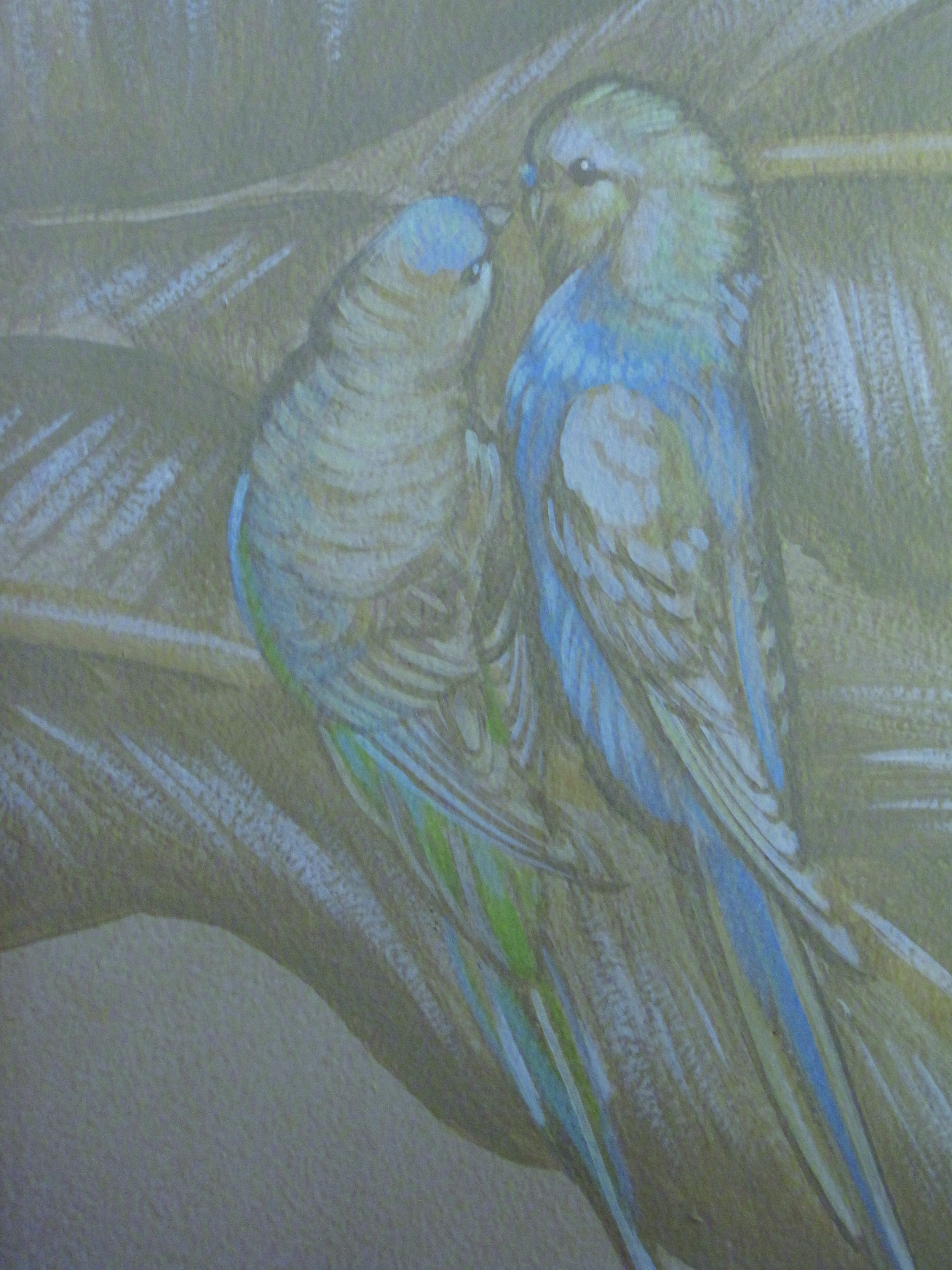 parakeetcouple.jpg