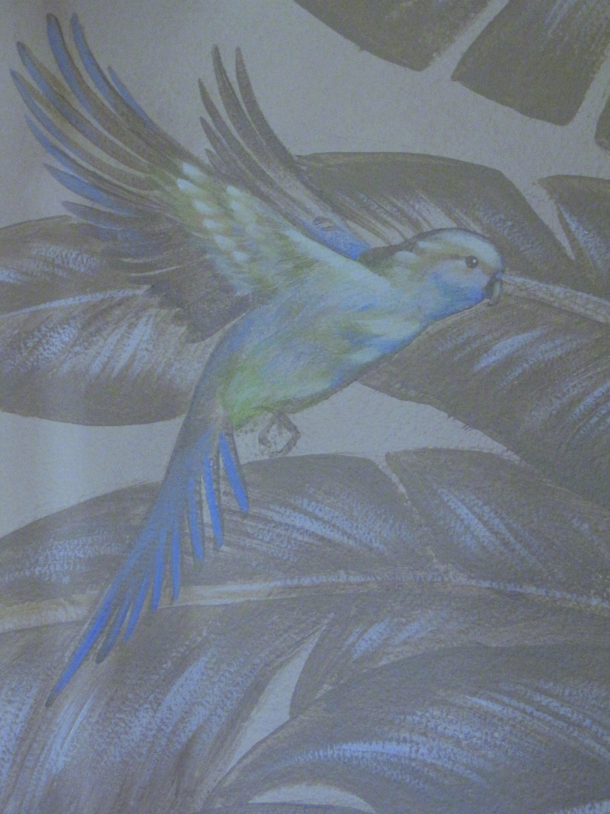 parakeetflight.jpg