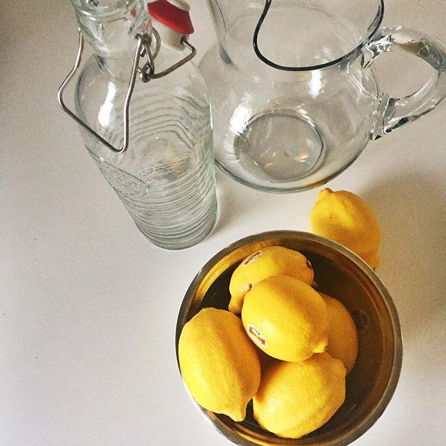 Because it is lemonade time! #mintleaves🌿 #organic #lemons #refreshing #saturday