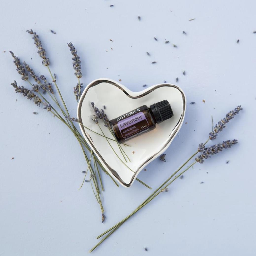 lavender essential oil doterra