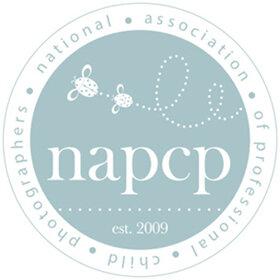 NAPCPLogoHomepage2.jpg