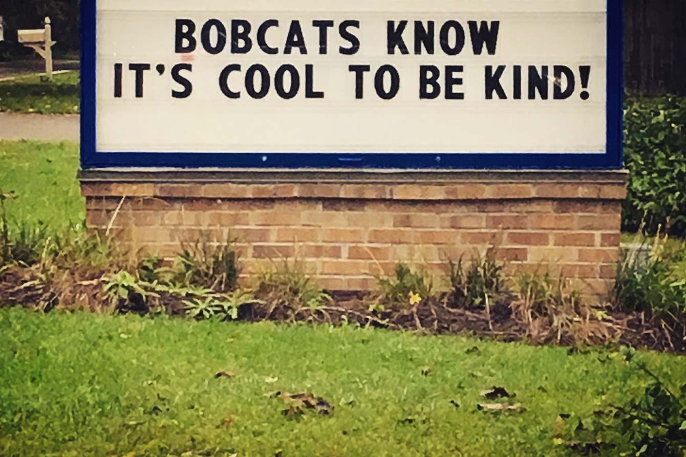 Have you ever even met a bobcat? Complete assholes.