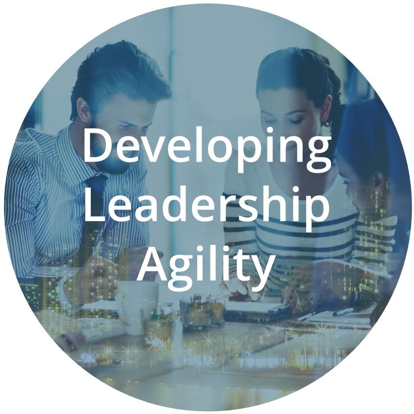 Develpoing_Leadership_Agility.jpg