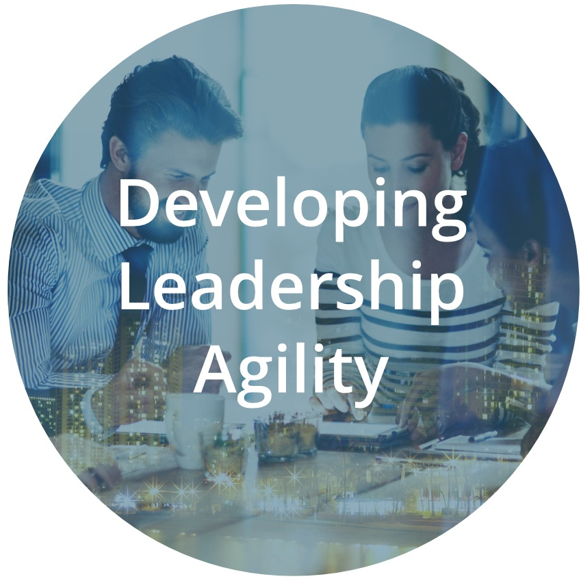Develpoing_Leadership_Agility.jpg