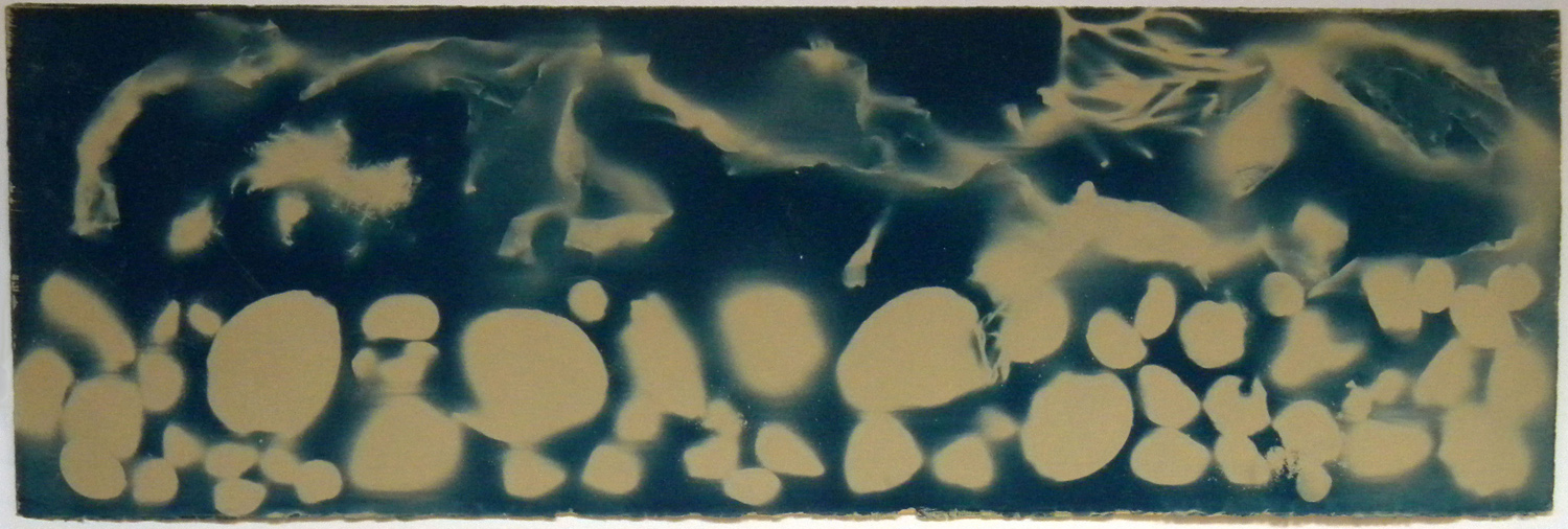 Ocean Flux, blueprint photogram, 10x30""