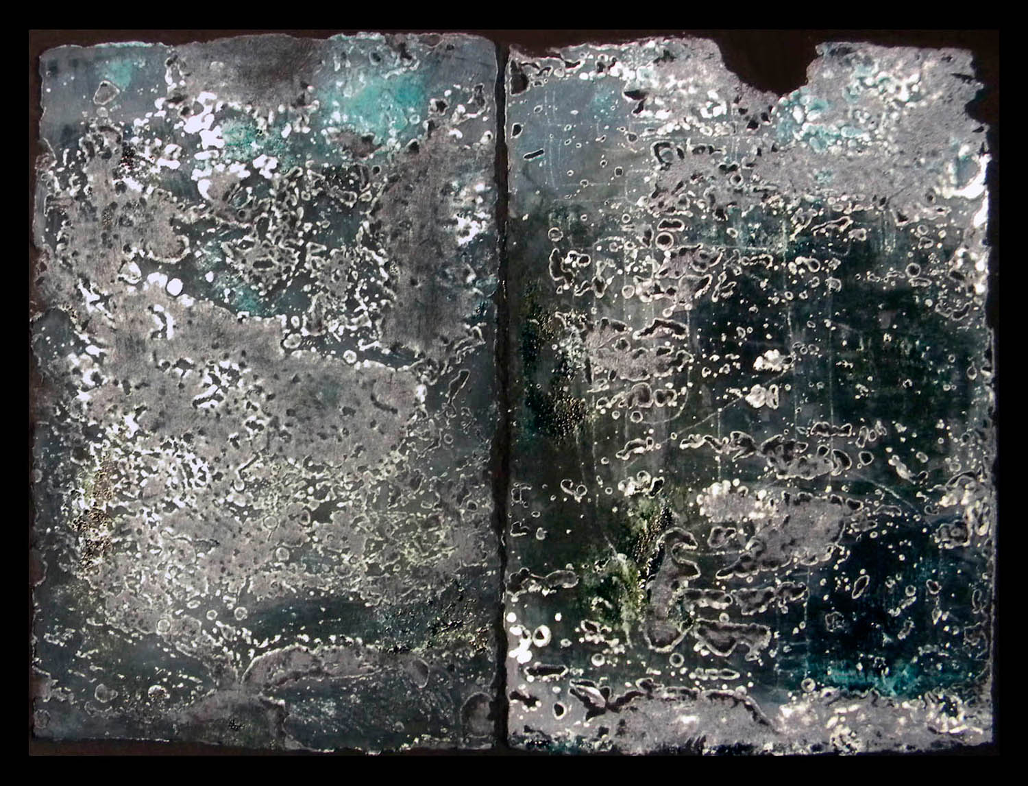 "Aquatic II, etching diptych/black paper, image 9.3x12.4"", paper 14x15"""