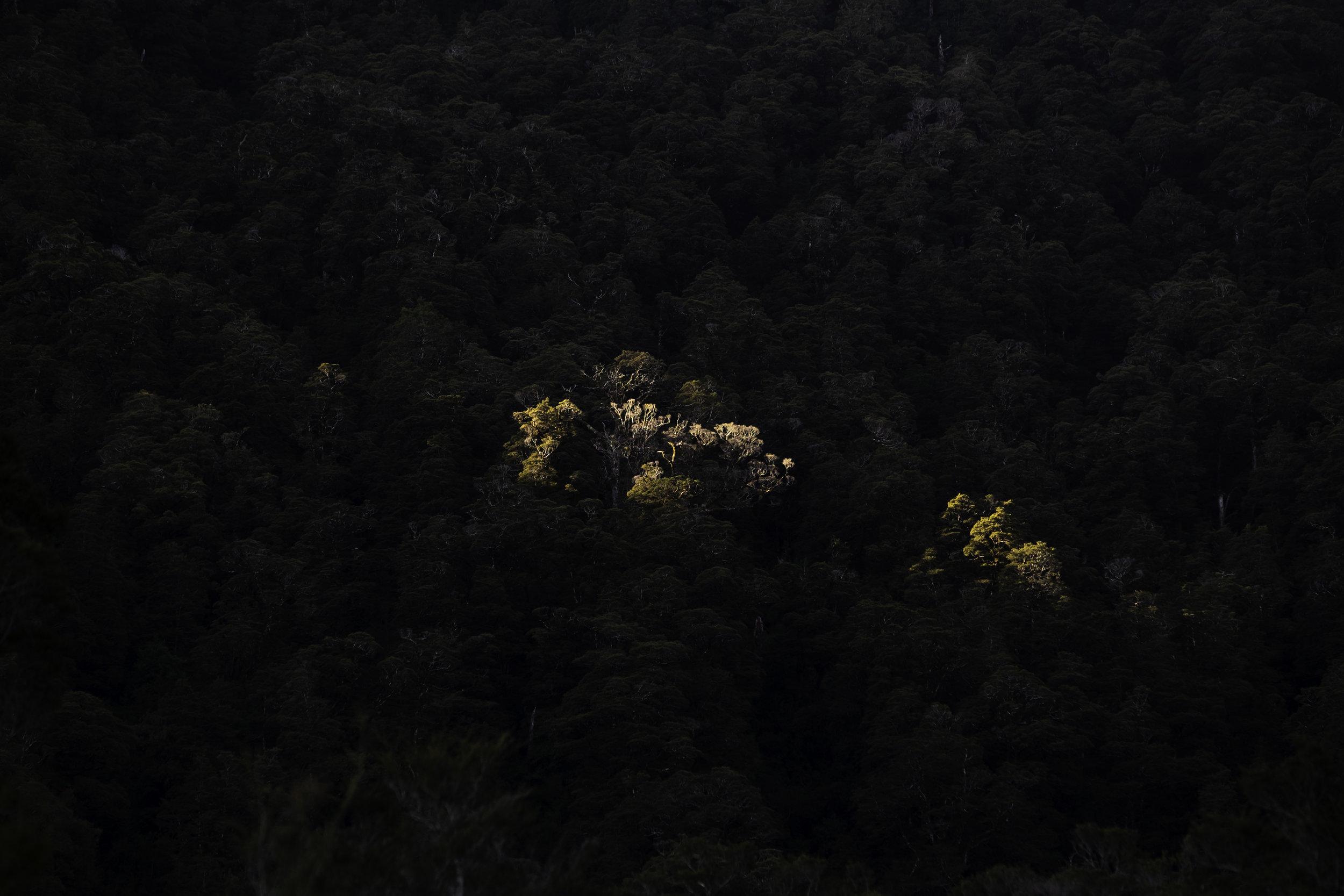 LowerBurkeRoar2019-JKPhoto-66.jpg