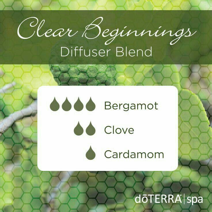 6266b94075d12586d99d484482138538--diffuser-blends-essential-oils.jpg