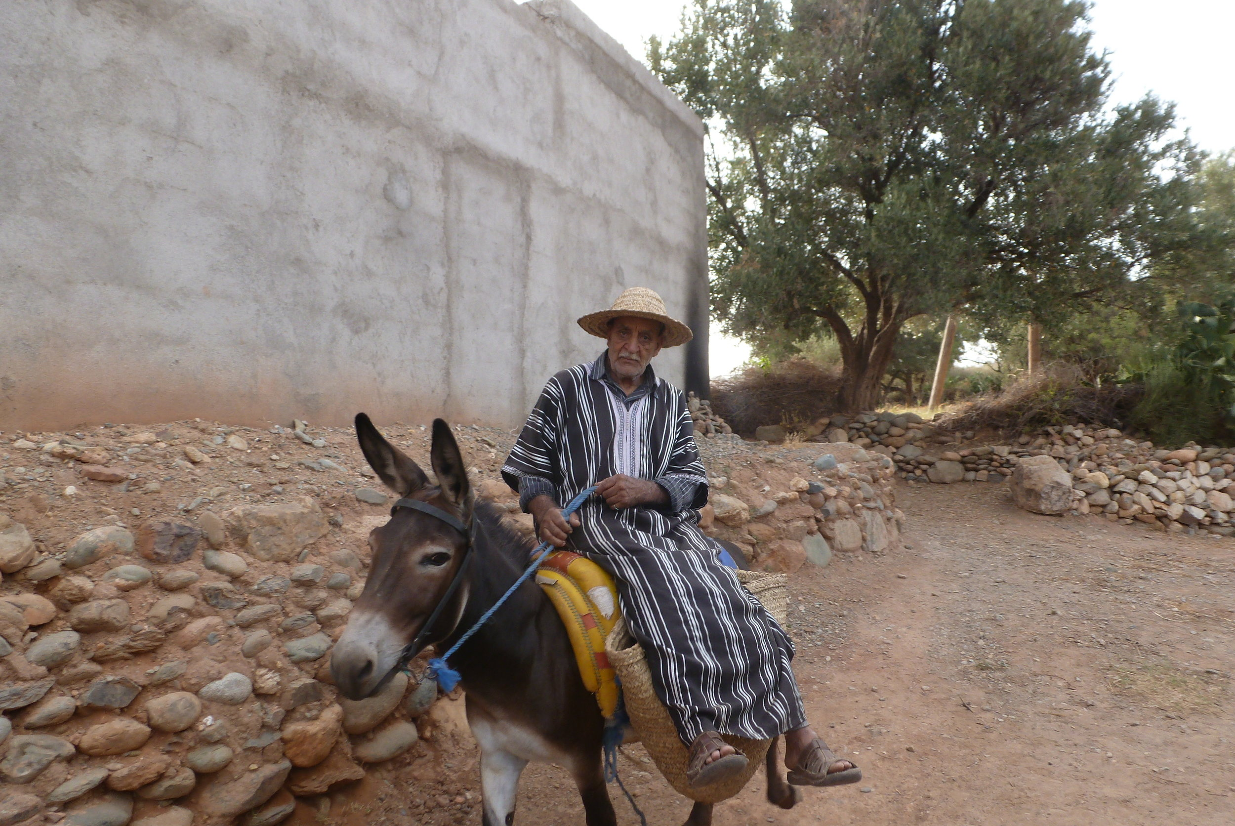 Mules and donkeys are still common modes of transport, whether on mountain trails or village roads.
