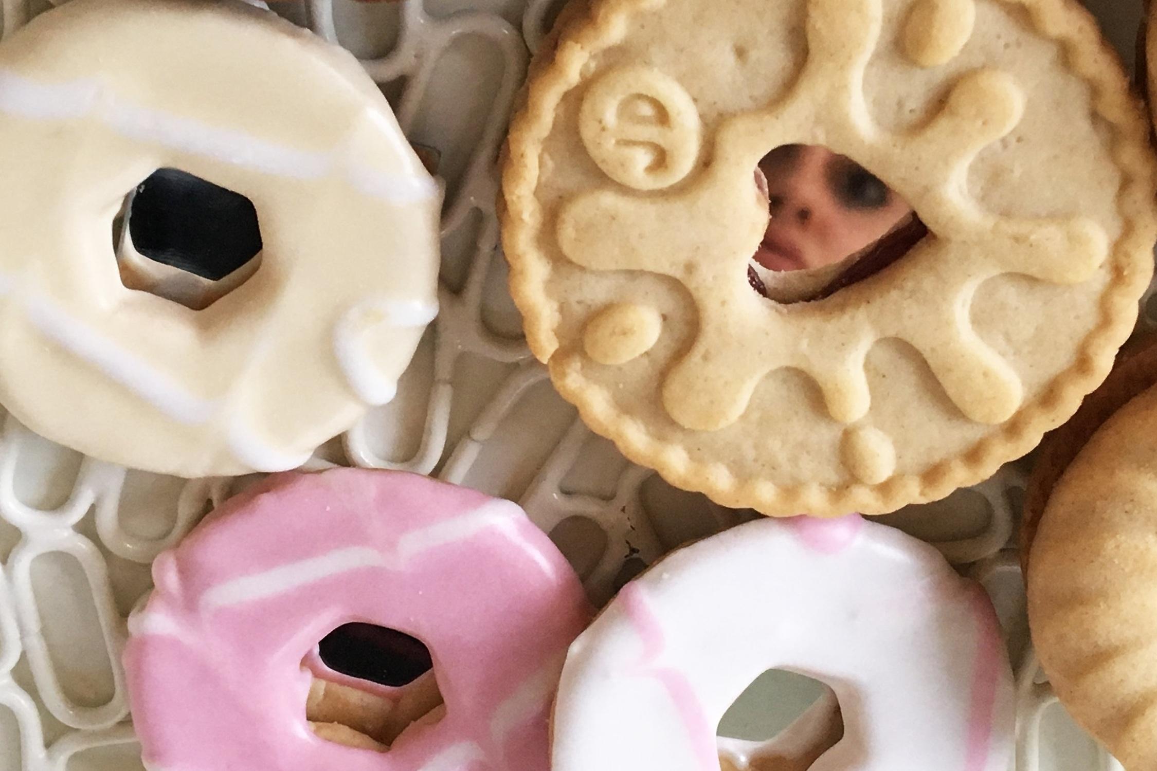Mirror Biscuits, 2017