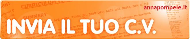 curriculum sito.jpg