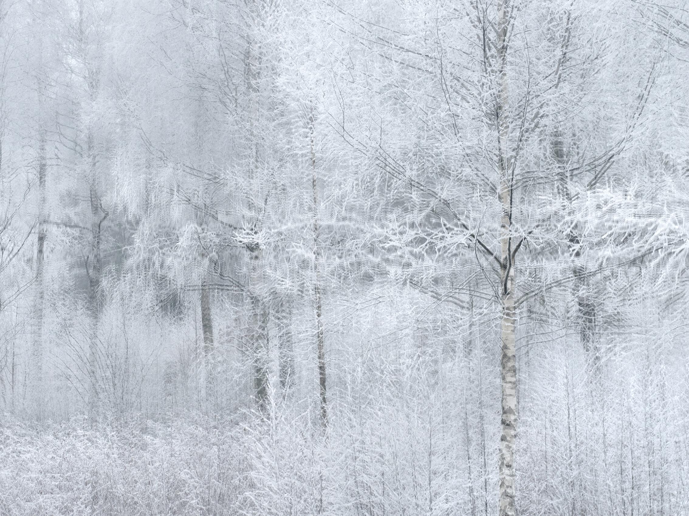 whiteout_1091299.jpg
